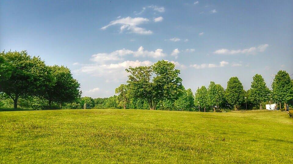 晴れた日の公園地面と空の境界線