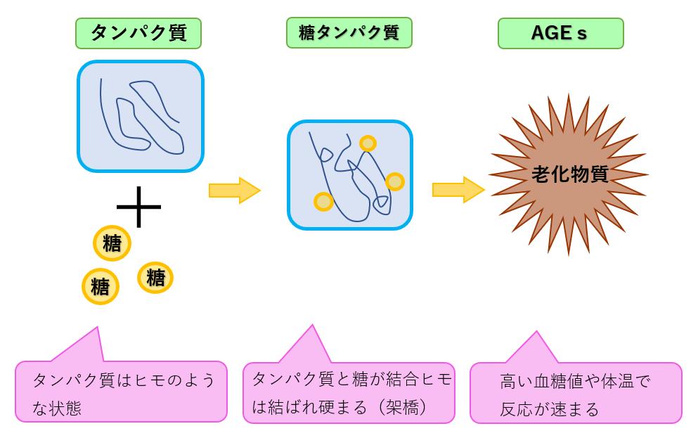 砂糖と老化